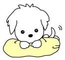 LINE スタンプ第45弾「I am Of. white puppy sticker 小犬の『オブ』」 絶賛・好評につき発売!!